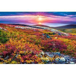 CASTORLAND Puzzle  103539 Barvy severu 1000 dílků