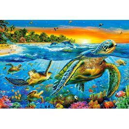CASTORLAND Puzzle Vodní želvy 1000 dílků