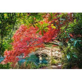 CASTORLAND Puzzle Japonská zahrada 1000 dílků