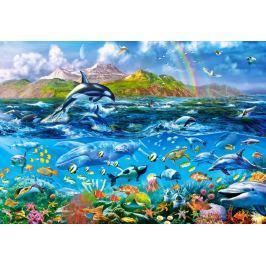 CASTORLAND Puzzle Život v oceánu 1000 dílků