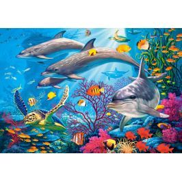 CASTORLAND Puzzle  151486 Tajemství útesu 1500 dílků