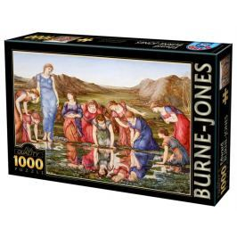 D-TOYS Puzzle Zrcadlo Venuše 1000 dílků