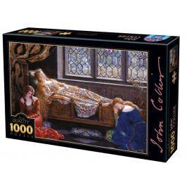 D-TOYS Puzzle  73822 J. Collier: Šípková Růženka 1000 dílků