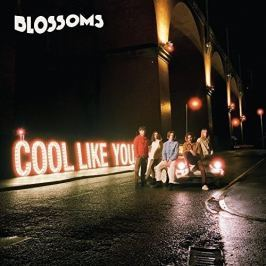 CD Blossoms : Cool Like You