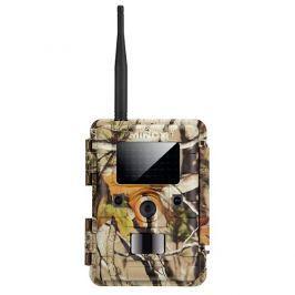 MINOX Fotopast   DTC 1100, technologie 4G, camouflage