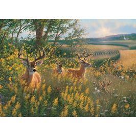 COBBLE HILL Puzzle  51789 M. Sieve: Stádo jelenů 1000 dílků