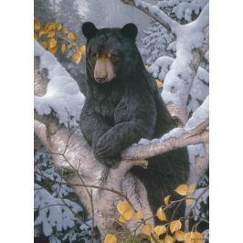 COBBLE HILL Puzzle  51802 J. Gadamus: Medvěd baribal 1000 dílků