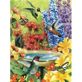 COBBLE HILL Puzzle  52032 Zahrada kolibříků 500 dílků