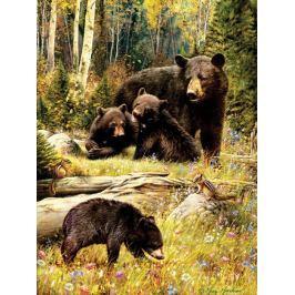 COBBLE HILL Puzzle  52102 Medvědí rodinka 500 dílků