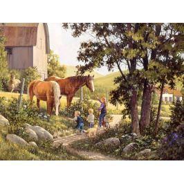 COBBLE HILL Puzzle  52106 D. Laird: Koně v létě 500 dílků