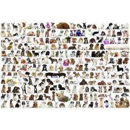 EUROGRAPHICS Puzzle Svět psů 2000 dílků