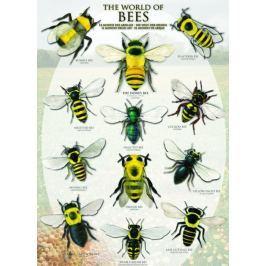 EUROGRAPHICS Puzzle Včely 1000 dílků