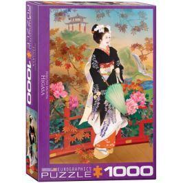 EUROGRAPHICS Puzzle Higasa 1000 dílků