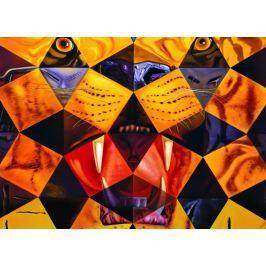 EUROGRAPHICS Puzzle Padesát abstrakcí 1000 dílků