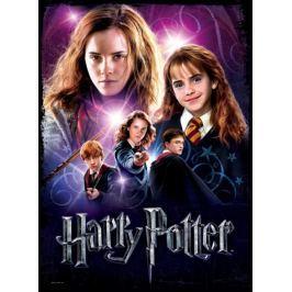 WREBBIT Puzzle Poster  500 dílků - Hermiona Grangerová