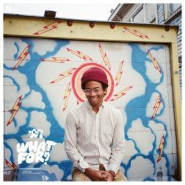 CD Toro Y Moi : What For?