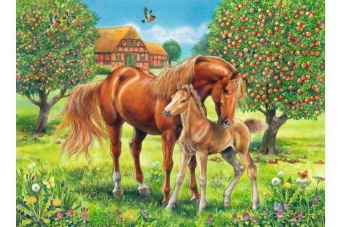 RAVENSBURGER Dětské puzzle  100 dílků - Koně na pastvině XXL Puzzle
