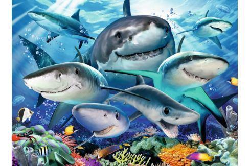 RAVENSBURGER Puzzle Usmívající se žraloci XXL 300 dílků Puzzle