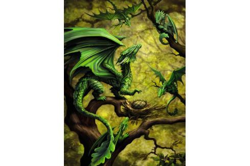RAVENSBURGER Puzzle Lesní drak 500 dílků Puzzle