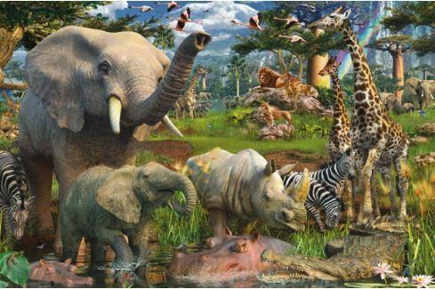 RAVENSBURGER Puzzle  3000 dílků - D.Penfound, Zvířata na safari Puzzle