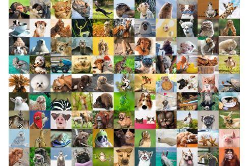 RAVENSBURGER Puzzle 99 vtipných zvířecích portrétů 1000 dílků Puzzle
