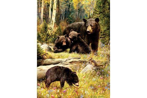 COBBLE HILL Puzzle  52102 Medvědí rodinka 500 dílků Puzzle