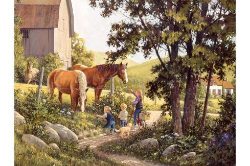 COBBLE HILL Puzzle  52106 D. Laird: Koně v létě 500 dílků Puzzle